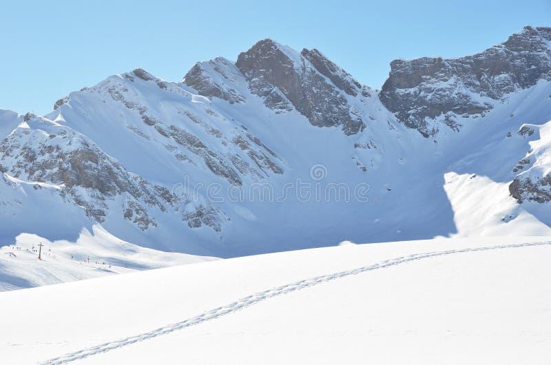 Download Passos na neve foto de stock. Imagem de exploração, dint - 29842792