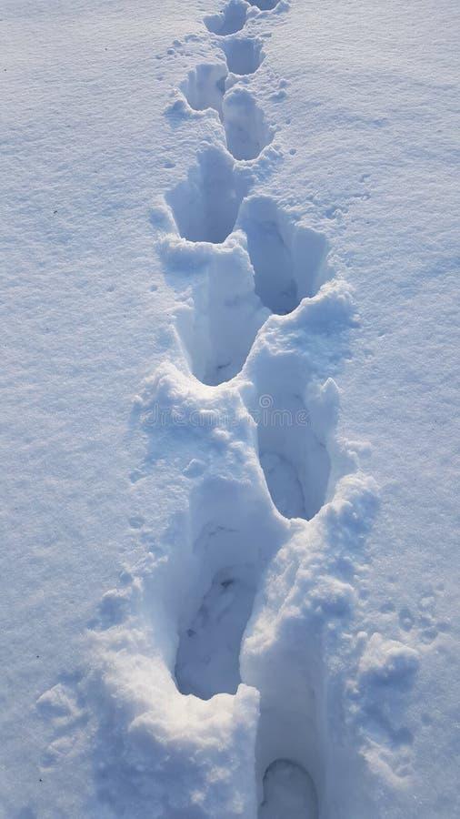Passos na neve profunda no dia de inverno frio fotografia de stock royalty free