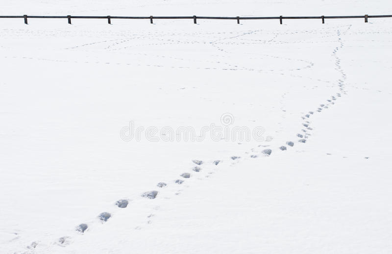 Passos na neve que conduz para cercar fotografia de stock royalty free