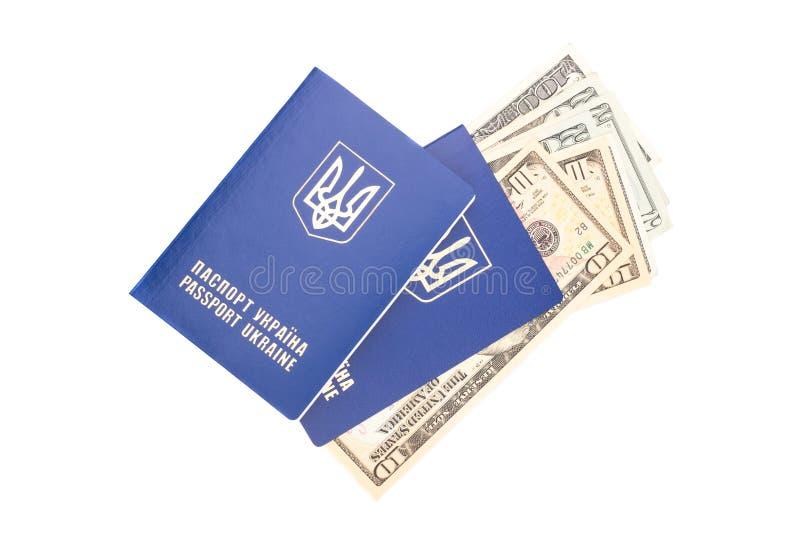 passport fotografia de stock