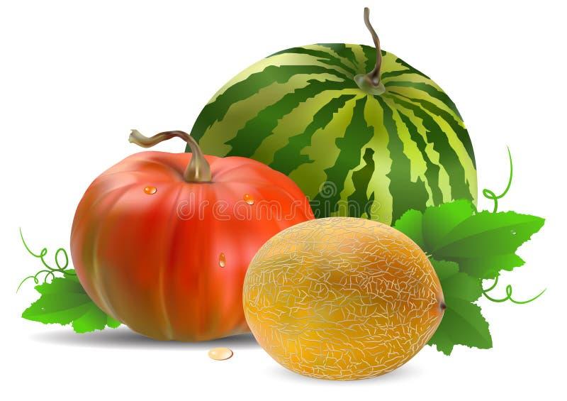 Pastèque et potiron de melon illustration libre de droits