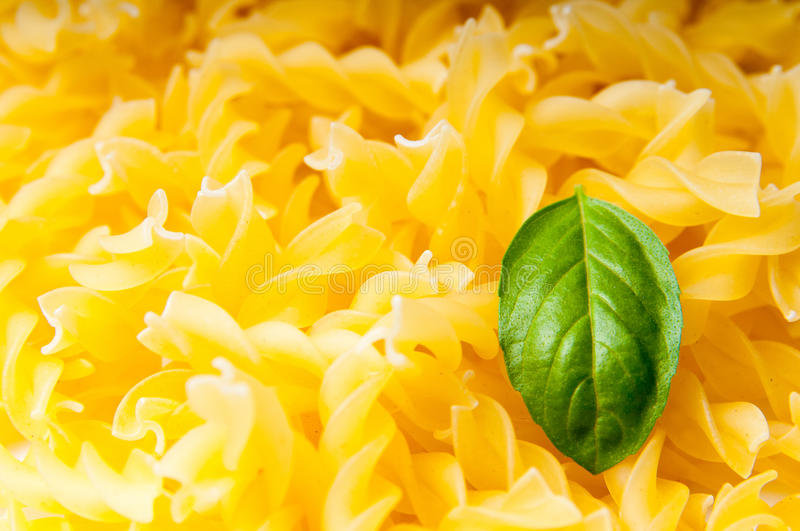 Pasta and basil. Fusilli pasta and basil leaves in macro mode stock photography