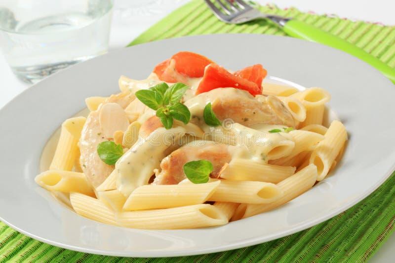 Pasta, carne del pollo e salsa crema fotografia stock libera da diritti