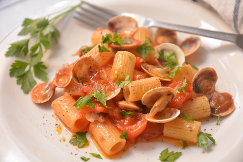 Pasta with clams italian sea food dish gourmet food. Tomato pepper ingredient royalty free stock image