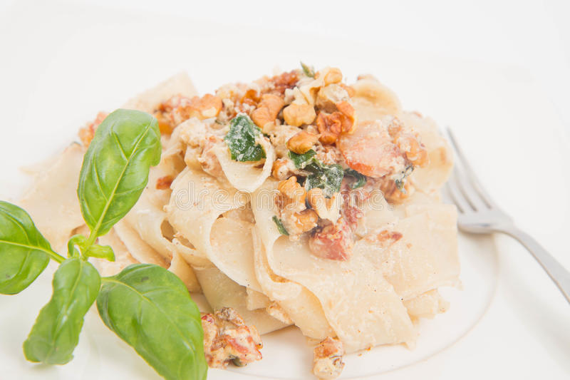 Pasta with cream sauce. With bacon, mushrooms, walnuts, spinach royalty free stock photo
