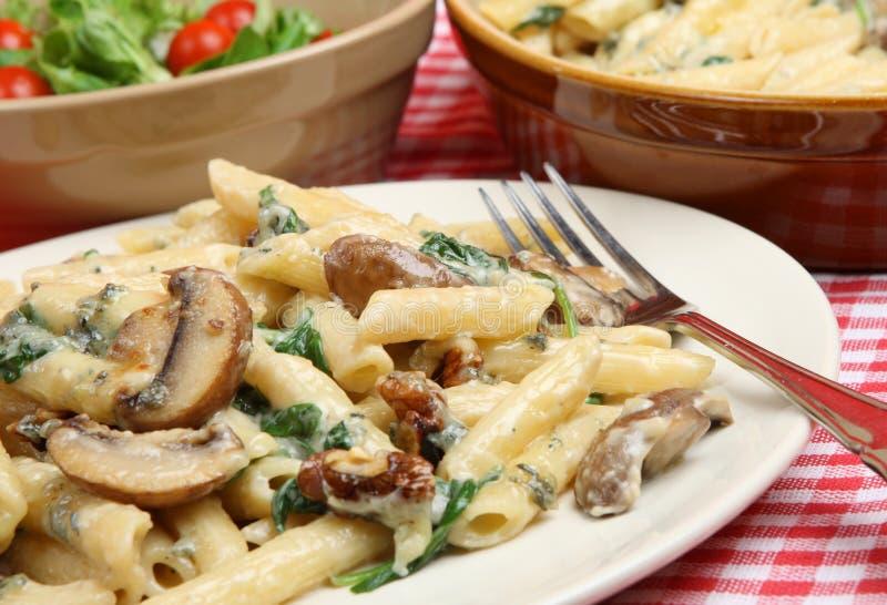 Pasta di Rigatoni fiorentina immagini stock libere da diritti