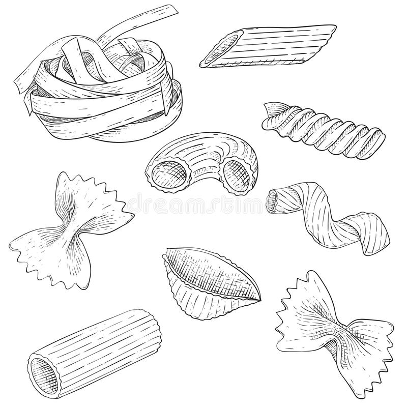 Pasta mix. Hand drawn sketch. Scattered single pieces. Vector illustration isolated on white background vector illustration