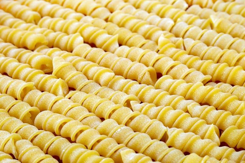 Pasta a spirale cruda fotografie stock