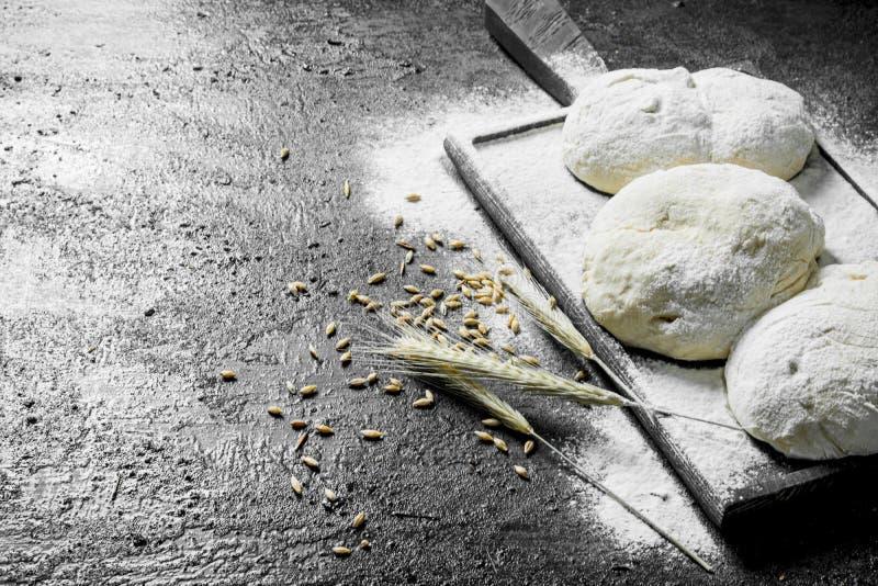 Pasta su un tagliere con farina, le spighette ed il grano immagini stock