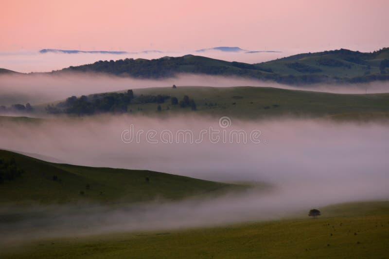 Pastagem de Bashang de Inner Mongolia foto de stock