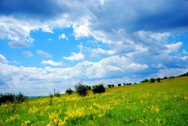 Pastagem e nuvens verdes fotos de stock royalty free