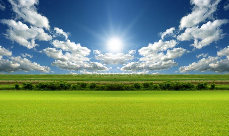 Pastagem na paisagem da base fotografia de stock