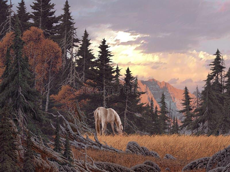 Pastando o cavalo ilustração royalty free