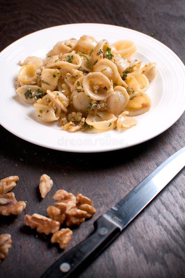 Pastaorecchiette med valnötter och örter royaltyfri foto