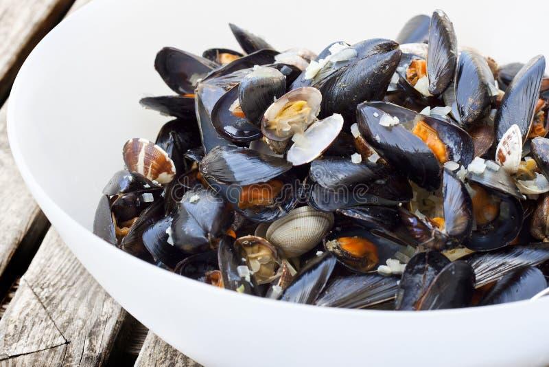 Pastaspagetti med musslor och vongole royaltyfri fotografi