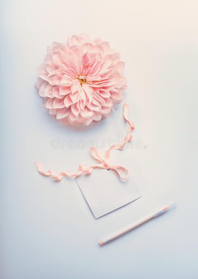 Pastel color mock up with cream pink flower , blank paper card with ribbon and point pen on light blue desktop background stock images