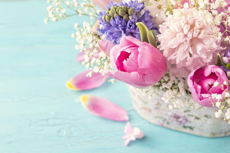 Pastel colored flower royalty free stock photos