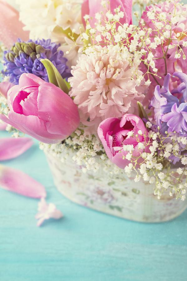 Download Pastel colored flowers stock photo. Image of spring - 108907946