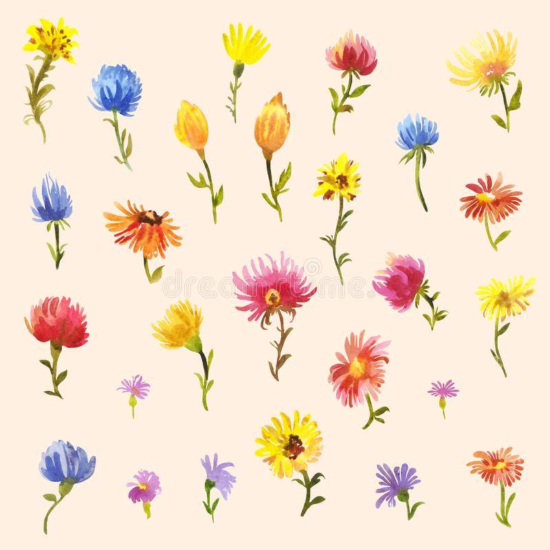 Pastel colored set of watercolor daises or gerberas isolated on beige or peach background. Set of watercolor little flowers. Multicolored daisies or gerberas vector illustration