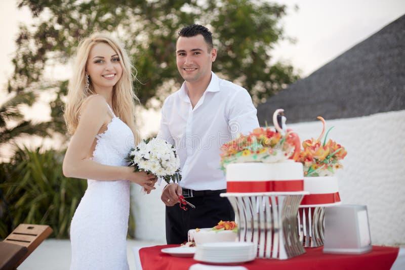 Pastel de bodas del corte del novio y de la novia en la playa de la isla tropical en Maldivas con las palmas y casa de planta baj imagenes de archivo
