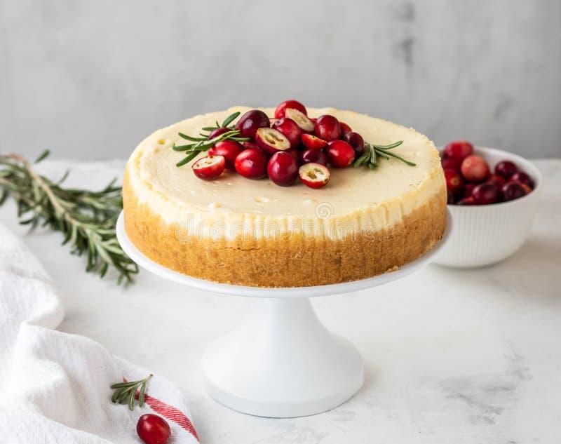 Pastel de queso clásico de Nueva York con el arándano, el romero y el té en el fondo concreto blanco, spase de la copia té y imagen de archivo
