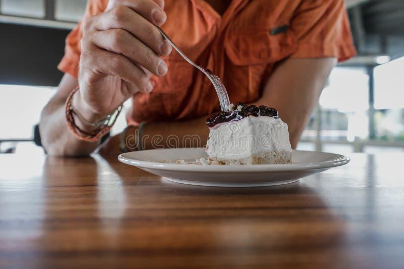 Pastel de queso del arándano de la torta, comida fotografía de archivo libre de regalías