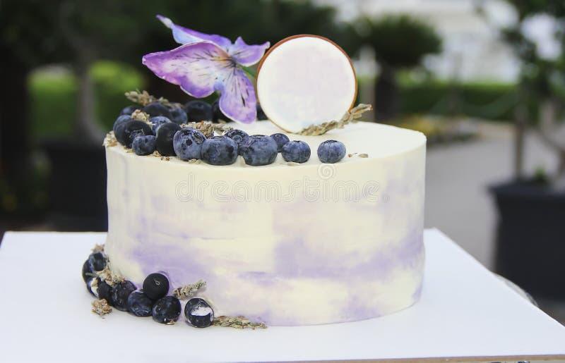 Pastel de queso festivo de la torta de la galleta con los arándanos y las mariposas para el cumpleaños imágenes de archivo libres de regalías