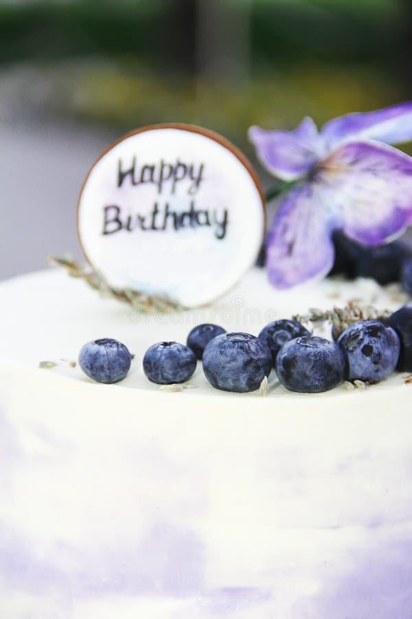 Pastel de queso festivo de la torta de la galleta con los arándanos y las mariposas para el cumpleaños imagenes de archivo