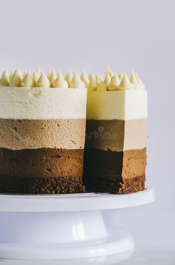 Pastel de tres chocolate foto de archivo libre de regalías