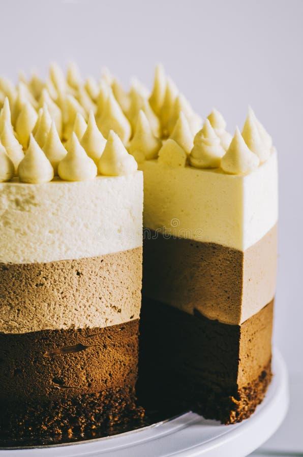 Pastel de tres chocolate imagen de archivo