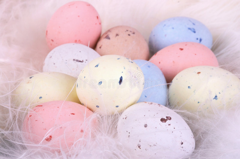 Pastel eggs. Pastel colored easter eggs on a soft bed of feathers royalty free stock photography