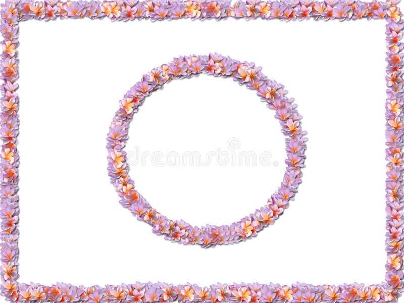 Pastel flower borders stock illustration