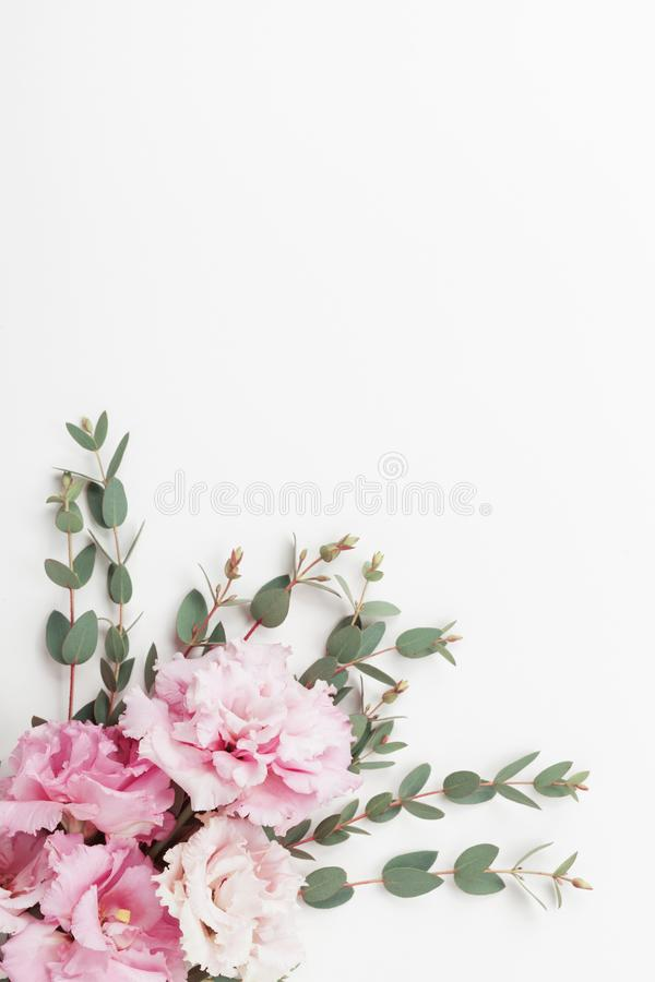 Pastel flowers and eucalyptus leaves on white table top view. Flat lay style. royalty free stock photography