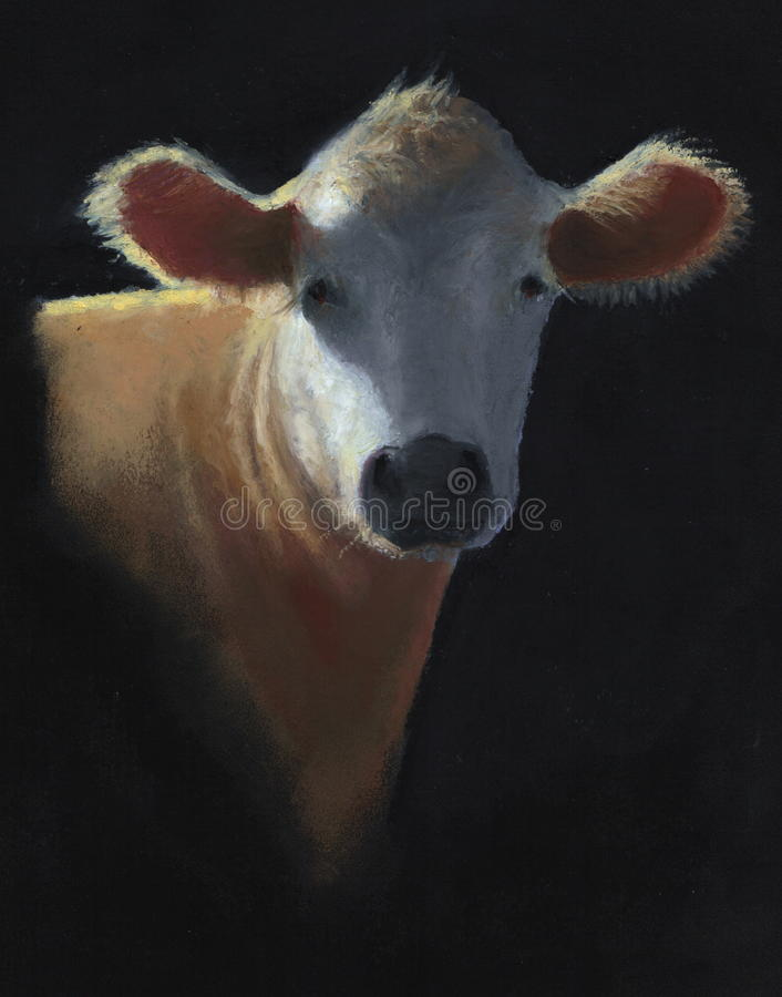 Pastel Painting Of White Faced Cow Royalty Free Stock Images