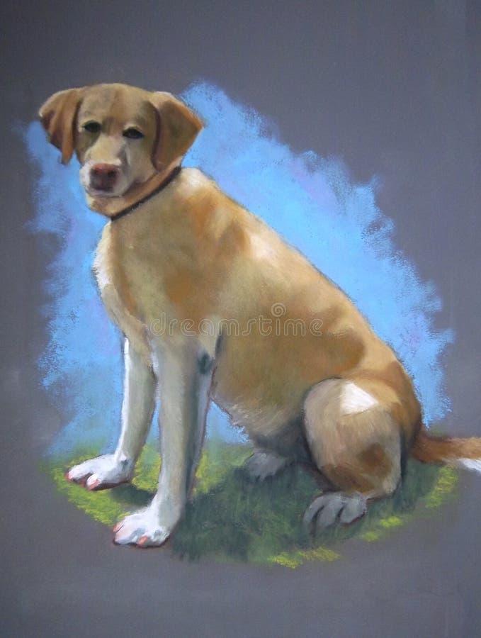 Download Pastel Painting Of Yellow Lab Dog Stock Illustration - Illustration: 17728147
