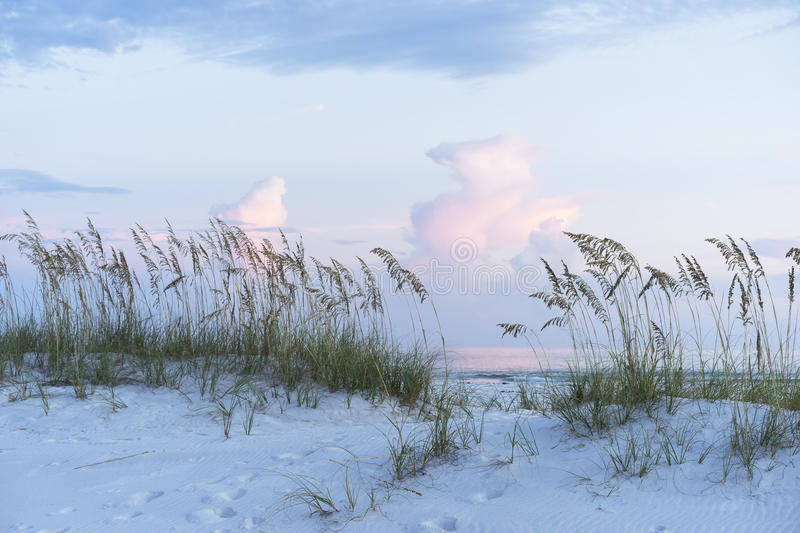 Pastel Sunset at Florida Beach Scene with Sea Oats and Soft Colo stock photos