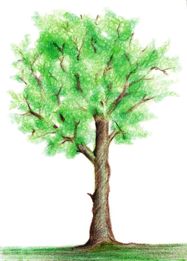 Pastel tree vector illustration