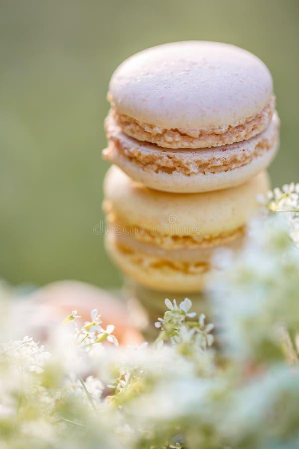 Pasteles franceses airosos dulces deliciosos Macarons de los dulces del postre imagen de archivo libre de regalías