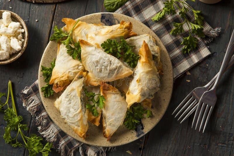 Pasteles hechos en casa de Spanakopita del Griego foto de archivo libre de regalías