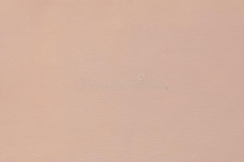 Pastell stieg weicher strukturierter Hintergrund des Staubes lizenzfreie stockfotos