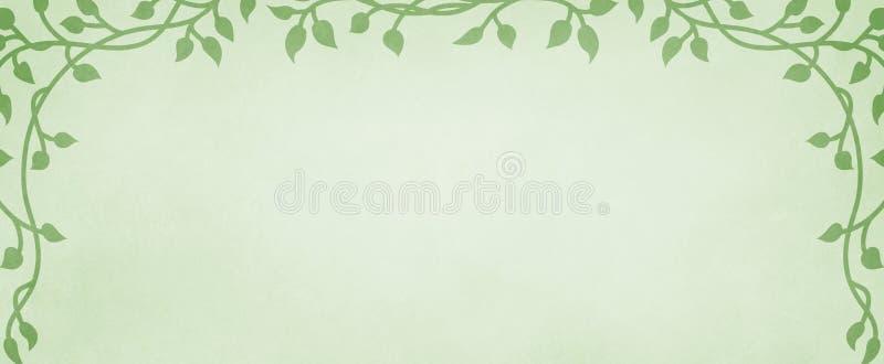 Pastellfärgad grön bakgrund med murgrönavinrankagränsen på svag bekymrad grungetextur och den mjuka färgdesignen, elegant vårwebs stock illustrationer