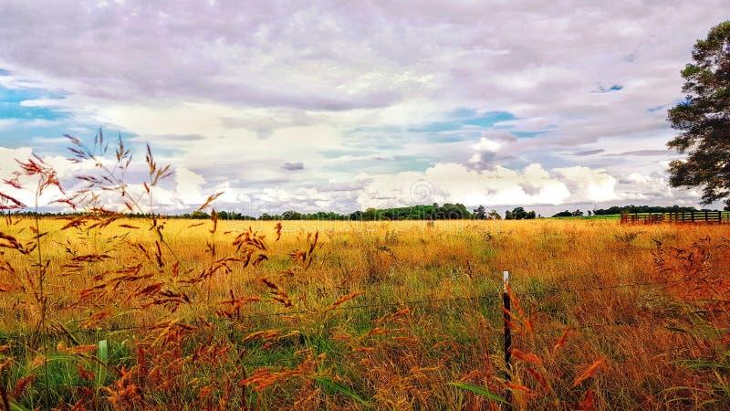 Pastellfärgad lantgård arkivbild