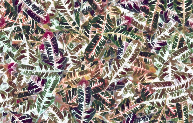 Pastellfärgad modell av crotonsidor royaltyfria bilder
