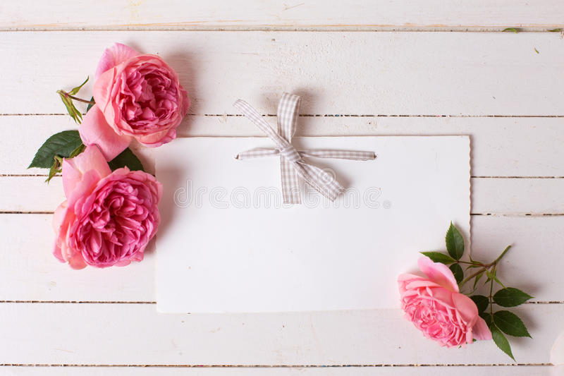 Pastellfärgade rosor och tömmer etiketten på vit träbakgrund fotografering för bildbyråer
