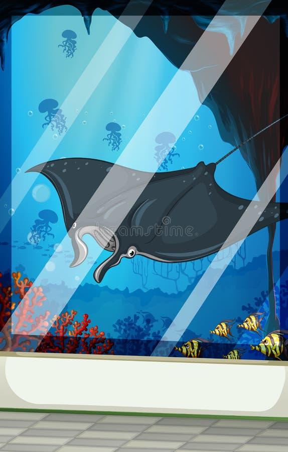 Pastenague et poissons à l'aquarium illustration de vecteur