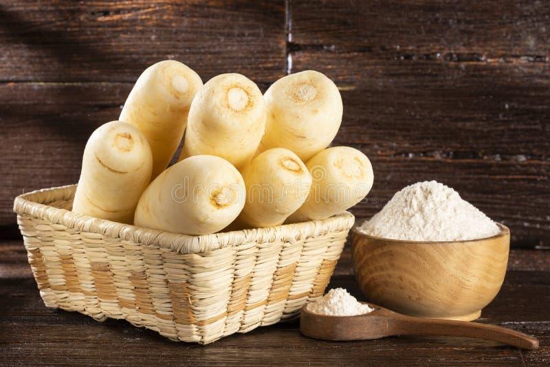 Pasternaki, selerowy creole, racacha, virraca, biała marchewka - Arracacia xanthorrhiza zdjęcia royalty free