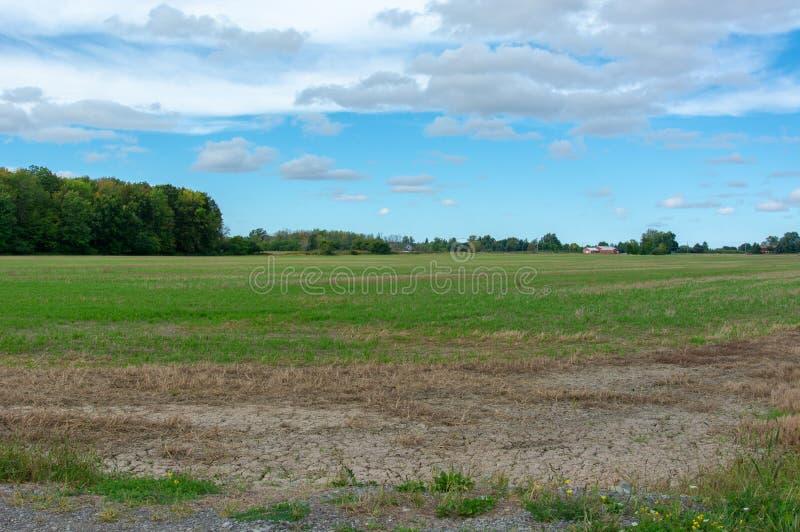 Pasto verde del país con los árboles rojos del granero y el cielo nublado fotos de archivo libres de regalías