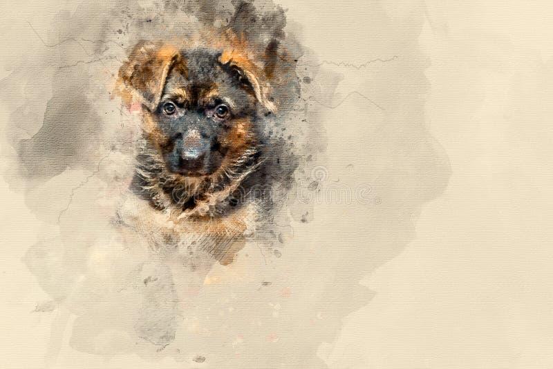 Pastor alemán Puppy libre illustration