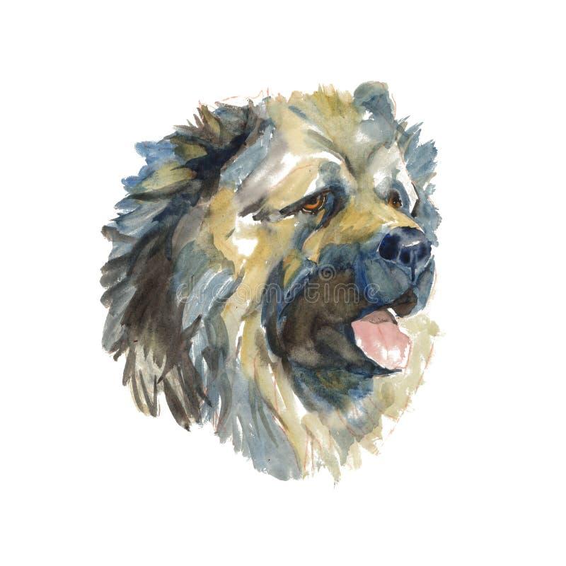 Pastor caucasiano Dog - cão pintado à mão da aquarela ilustração stock