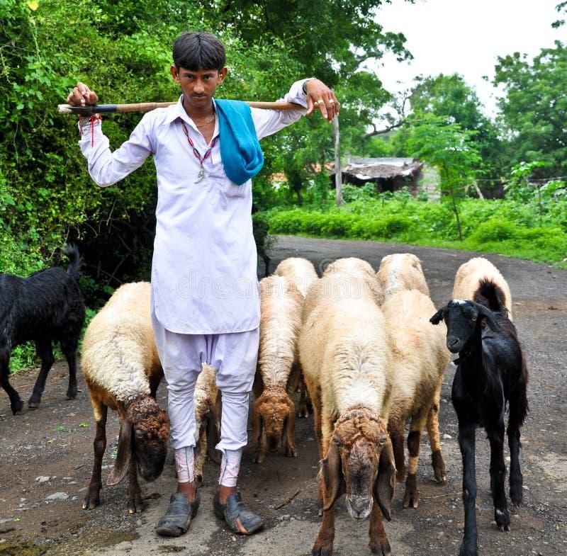 Pastor indiano imagens de stock